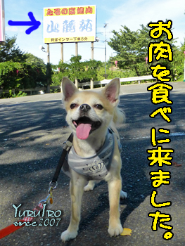 yuruiro20150726_k001