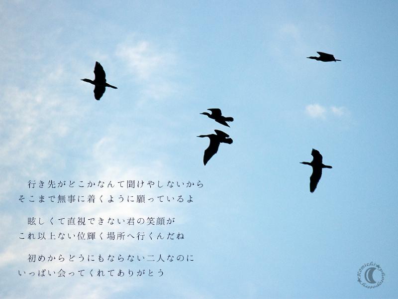 thank you = good bye