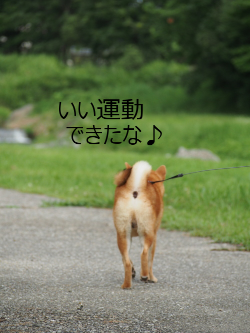 20150424-003.png