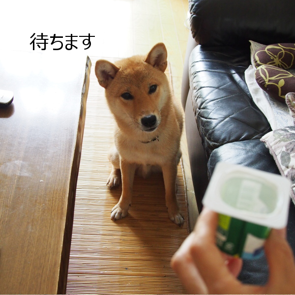 20150624-001.png