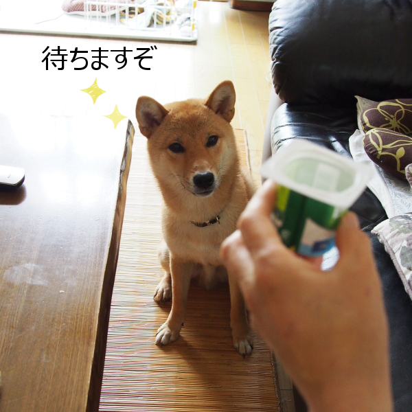 20150624-002.png