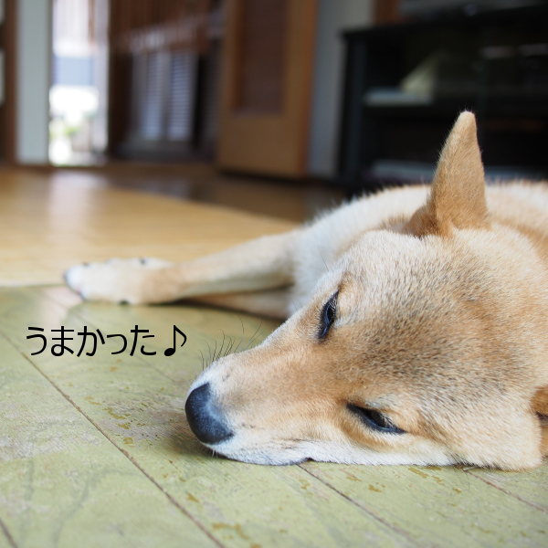 20150624-003.png