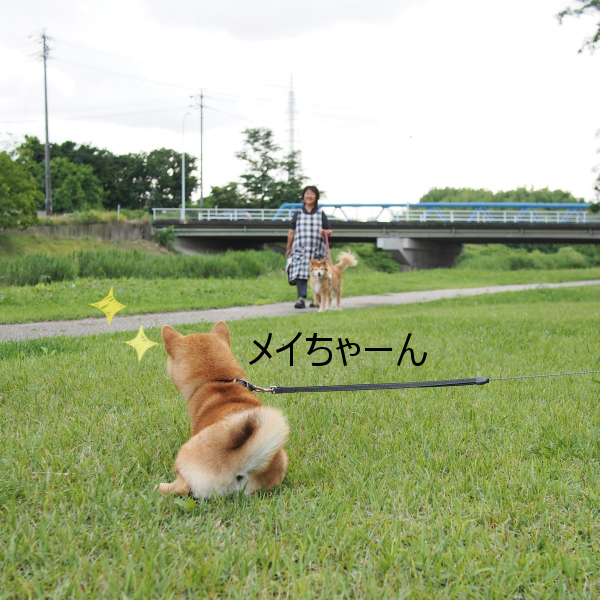 20150628-003.png