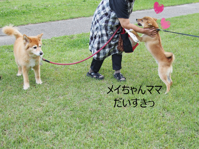 20150628-004.png