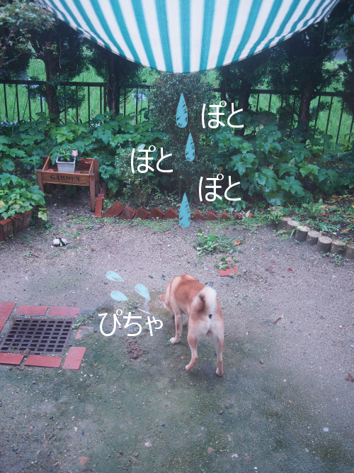 20150713-004.png