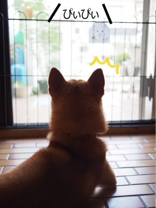 20150714-001.png