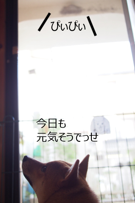 20150714-002.png