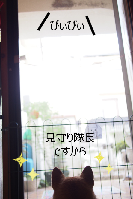 20150714-003.png