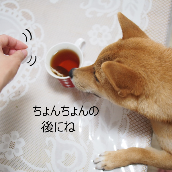 20150720-003.png