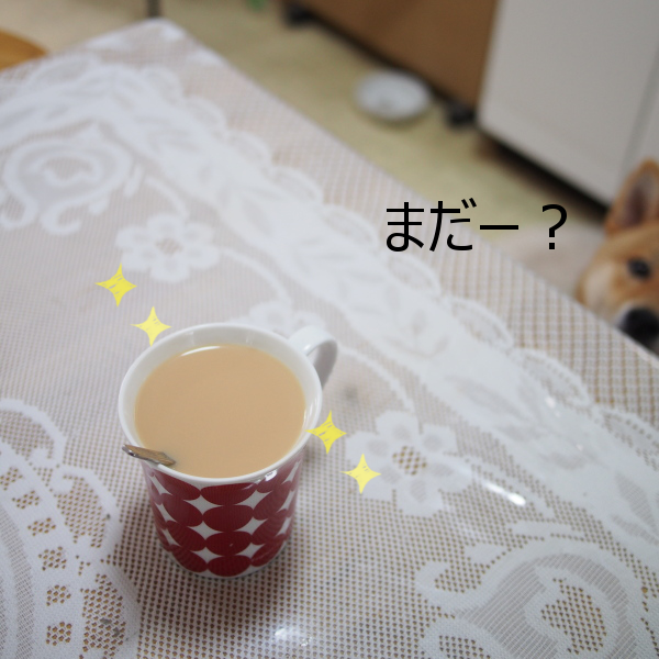 20150720-005.png