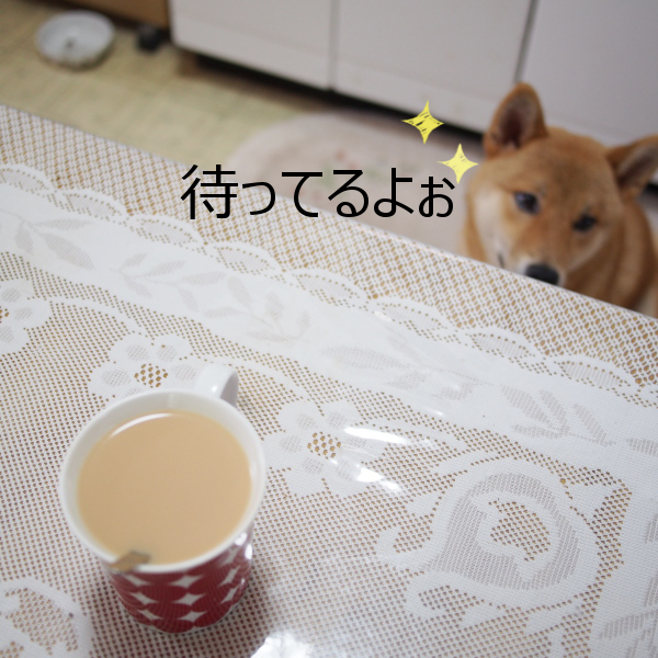 20150720-006.png