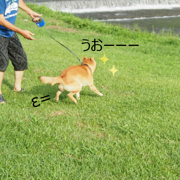 20150724-001.png
