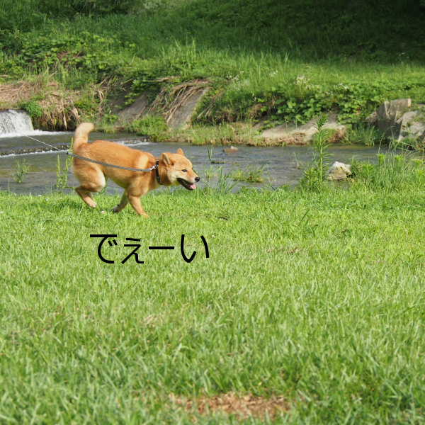 20150724-004.png