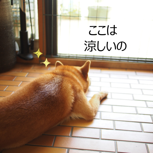 20150728-003.png