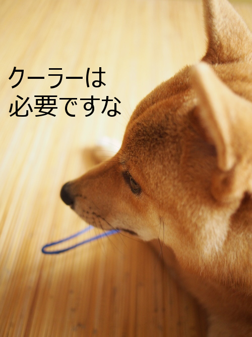 20150731-002.png