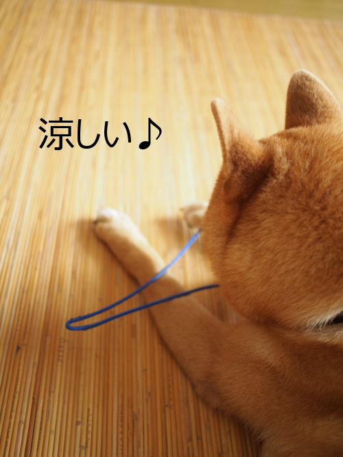 20150731-003.png