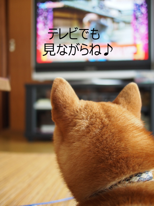 20150731-004.png