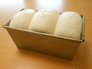 201507 山型食パン ホシノ 焼成前