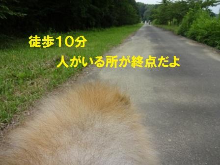 150721-3