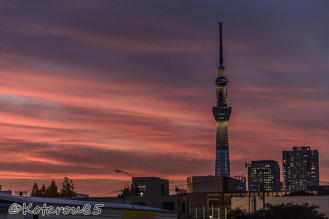 夕焼けスカイツリー 20150714