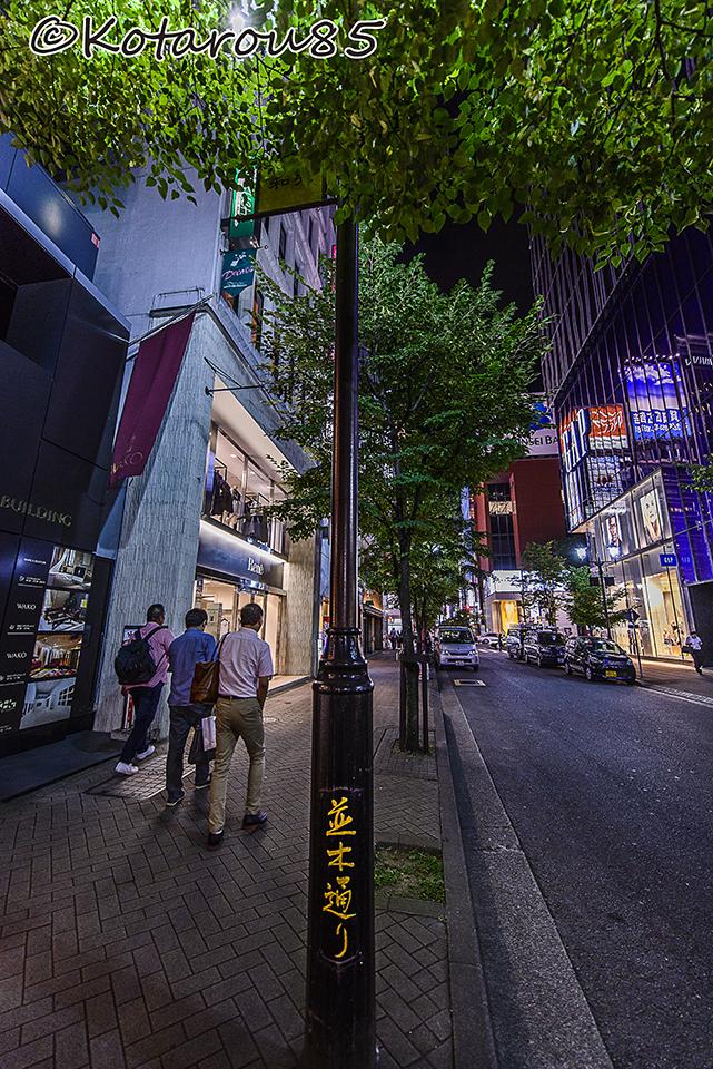 真夏の夜の並木通り 20150807