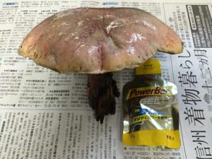 blog_2015_08_03_1.jpg