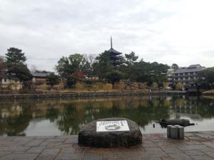 sarusawa1216_convert_20141216112004.jpg