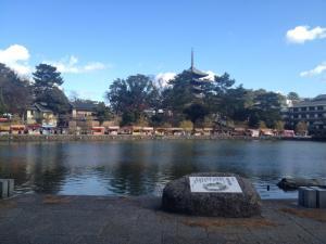 sarusawa1217_convert_20141217115511.jpg