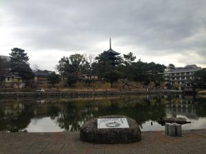 sarusawa12225_convert_20141225114241.jpg