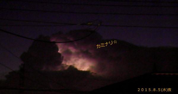 花ブ20150806-1