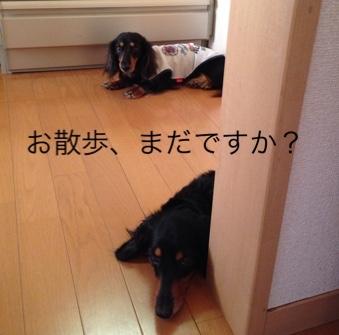 fc2blog_20150724165606c22.jpg