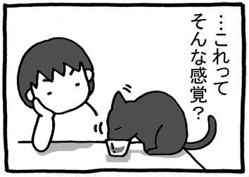 136.jpg