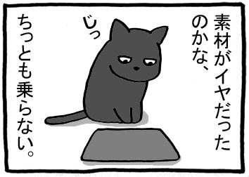 146m.jpg