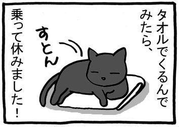 148m.jpg