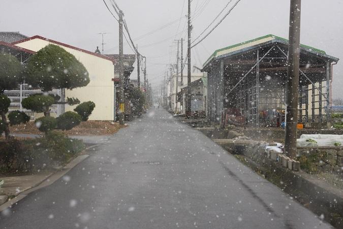 0104yuki.jpg