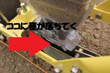 s_IMG_3461.jpg