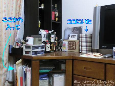 20150709_4.jpg