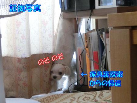 20150709_7.jpg