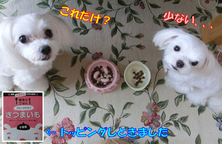 20150803_12.jpg