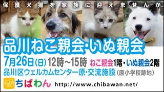 shinagawa56_320x180.jpg