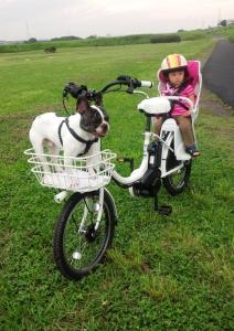 リノマナ自転車3