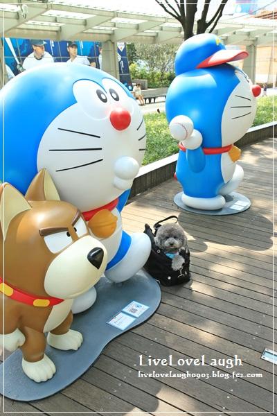 IMG_2656どら3