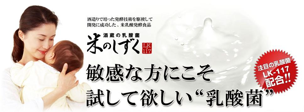lk117乳酸菌米のしずく1