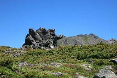 亀の形をした岩