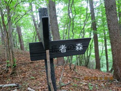 長者の森コースと合流
