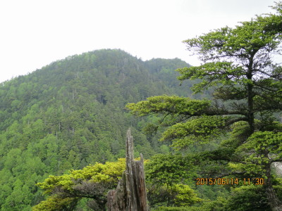 前衛峰から御座山