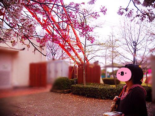 2015-04-11-13-46-26_pho2to.jpg