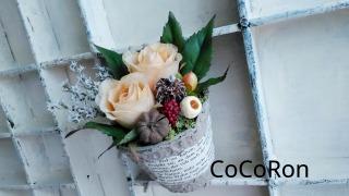 CoCoRon.jpg