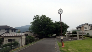 20150613-27.jpg