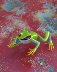 frog-DOF.jpg